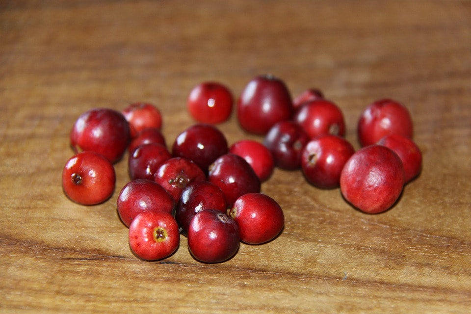 vörös áfonya